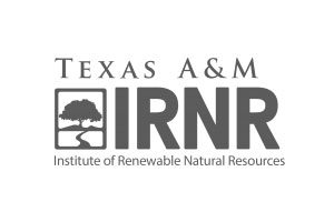 IRNR Logo