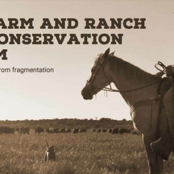 Texas Farm and Ranch Lands Conservation Program