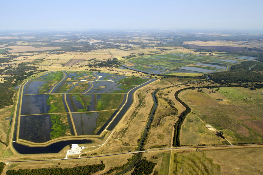 East Fork Wetland Project