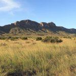 Decie Ranch