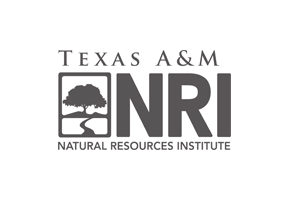 Texas A&M NRI